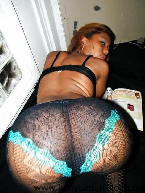 African fat ass